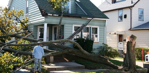 How to Clean Your Yard After a Hurricane
