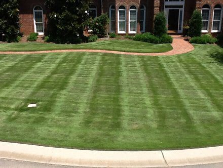 Lawn care in Charlotte keeps yard healthy.