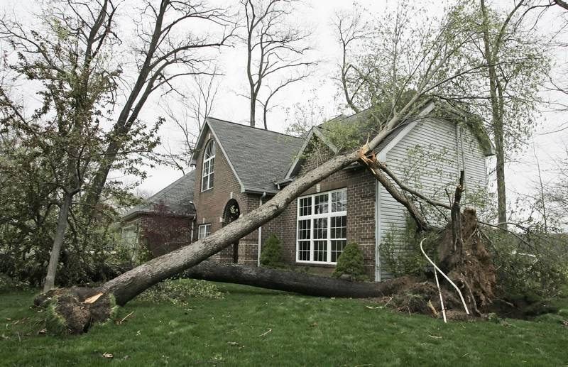 Large Tree Collapsed on a North Carolina Home after a Hurricane