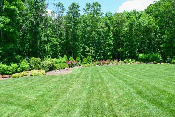 Lush, Green Lawn in Charlotte NC