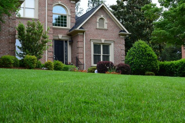 Green lawn and landscape maintenance by MetroGreenscape in Charlotte NC