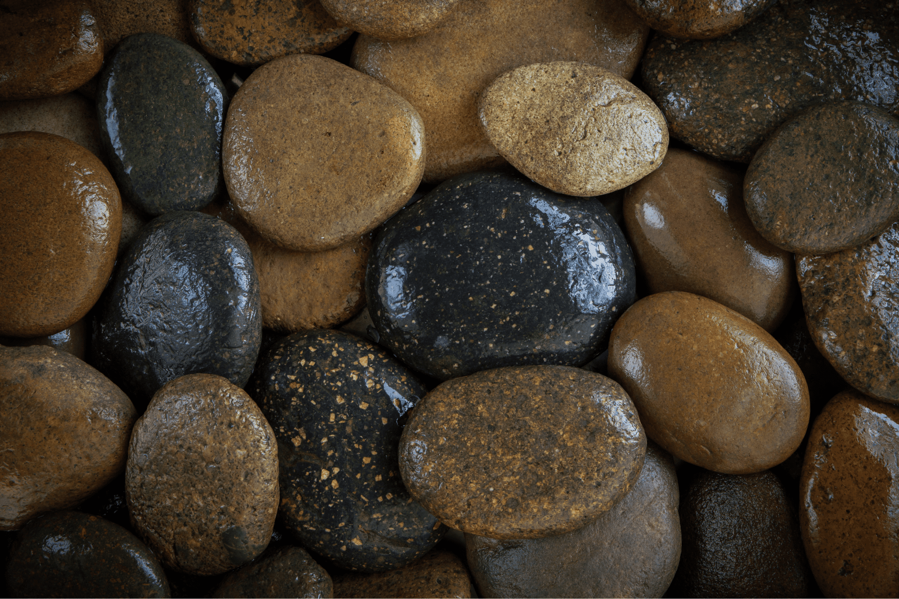 When landscaping with rock, river rocks are a popular choice