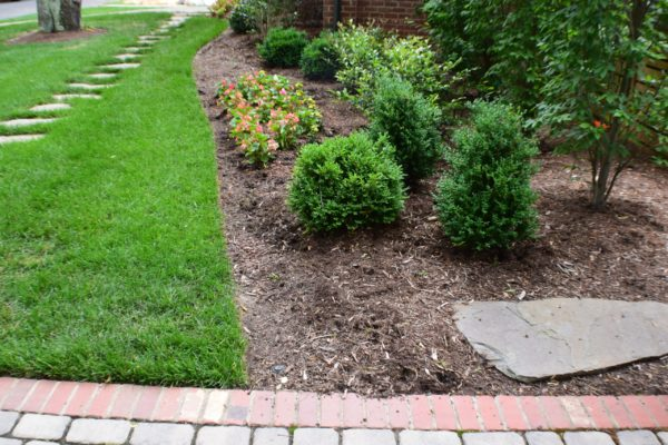 New landscaping and maintenance by MetroGreenscape